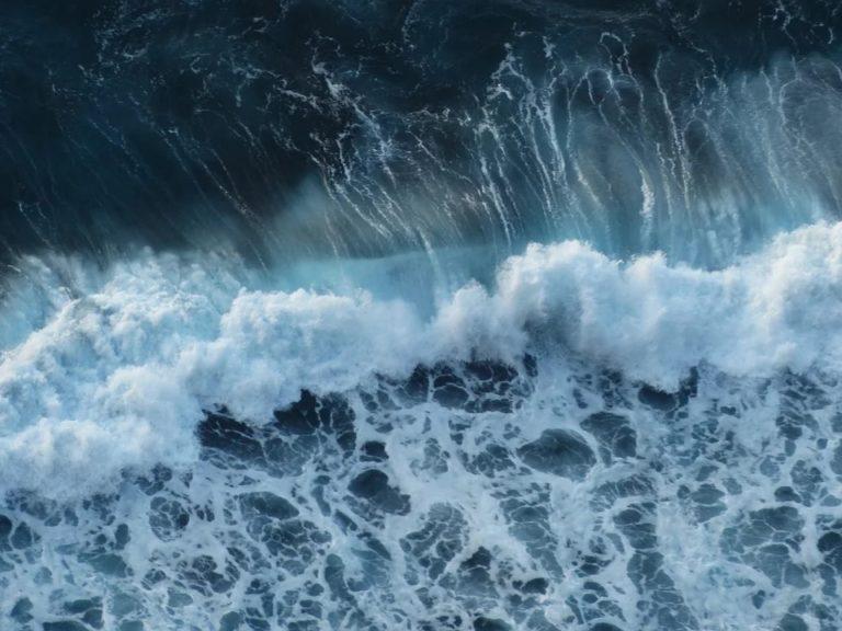 Издирват наши моряци след инцидент в Норвежко море