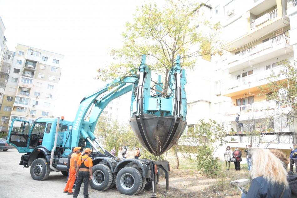 Специалисти проведоха обучение на озеленители от Варна