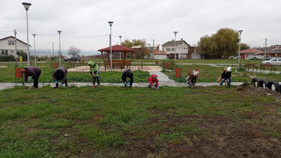 Засадиха 170 дървета в новия парк в Казашко