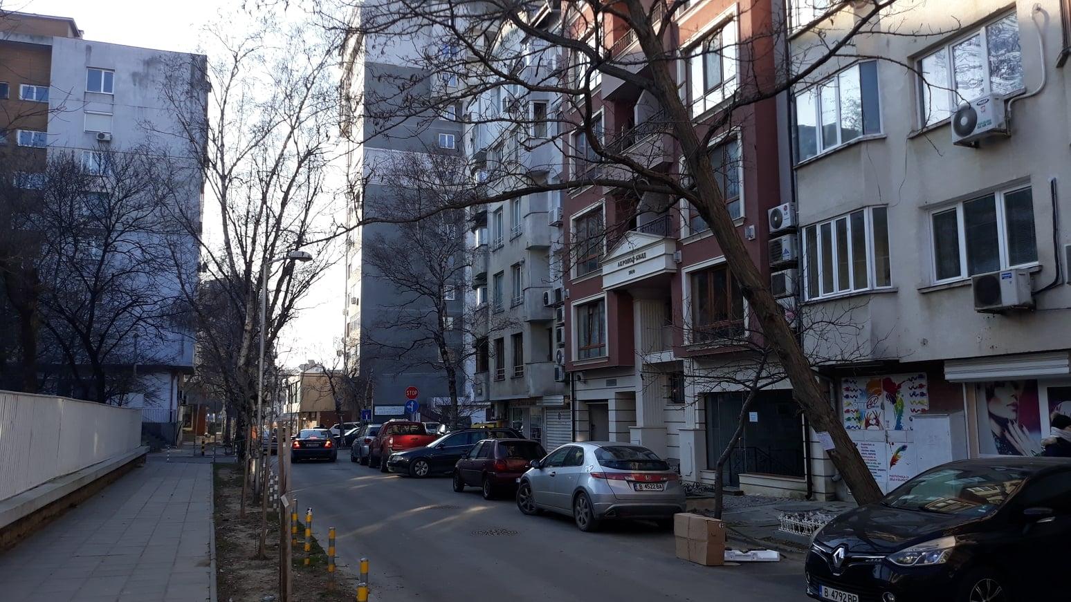"Варненка алармира: Дърво до детска градина е надвиснало опасно над улица ""Константин Величков"""