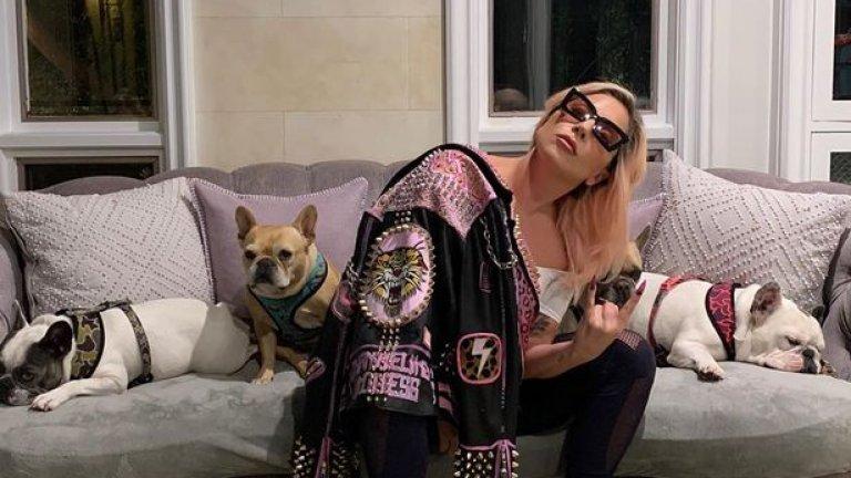 Простреляха асистента на Лейди Гага, за да отвлекат два от булдозите ѝ
