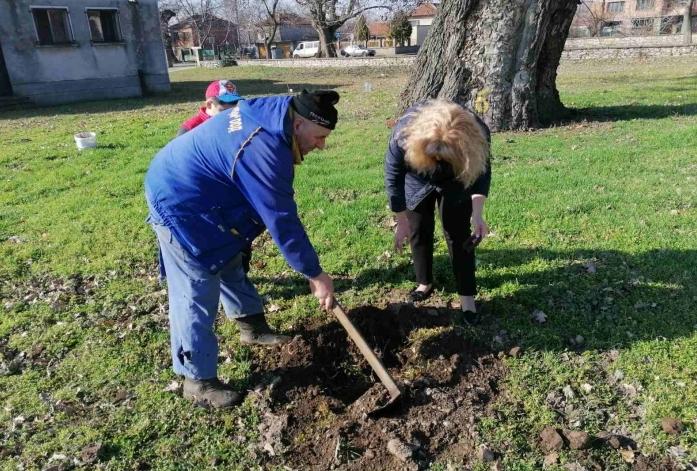 """40 дръвчета от вида """"Червен дъб"""" бяха залесени в сливенското село Самуилово"""