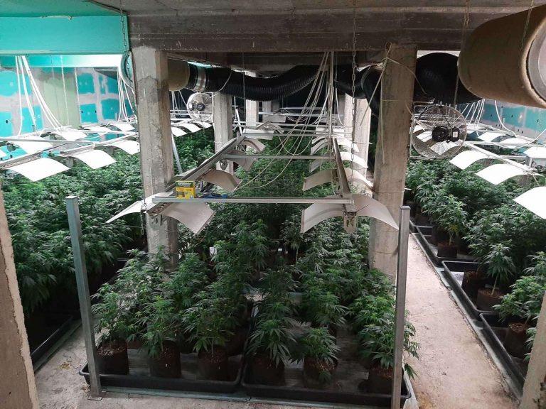 Криминалисти от ГДНП разбиха модерна лаборатория за марихуана