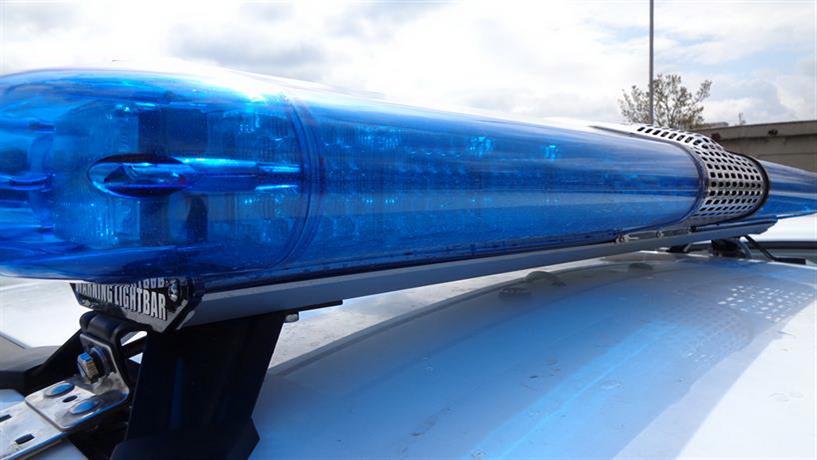 Високотехнологична оранжерия за отглеждане на канабис разкриха полицаи от ОДМВР – Добрич