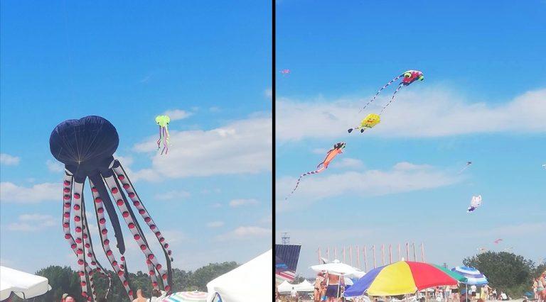 Снимки и видео: Фестивал на хвърчилата на плажа в Аспарухово